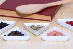 Variedad de granos de pimienta y de sal Foto de archivo libre de regalías