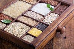 Variedad de granos y de semillas sanos Fotografía de archivo
