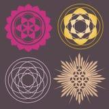 Variedad de impresión de formas del germen Imagenes de archivo
