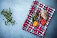 Variedad de ingredientes incluyendo las pimientas de los chiles, del jengibre, del canela y de chiles Foto de archivo
