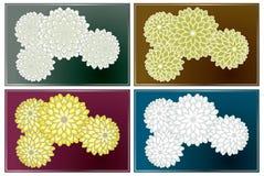 Variedad de la textura de Oriente del crisantemo stock de ilustración