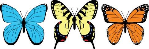 Variedad de mariposas Fotos de archivo