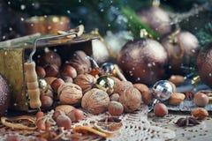 Variedad de nueces en la decoración de la Navidad y del Año Nuevo Fotos de archivo