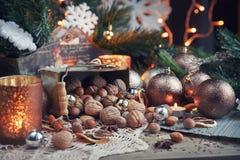 Variedad de nueces en la decoración de la Navidad y del Año Nuevo Fotografía de archivo libre de regalías