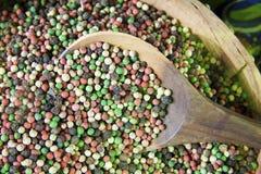 Variedad de pimienta Imagen de archivo libre de regalías