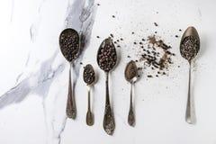 Variedad de pimientas negras Fotografía de archivo libre de regalías