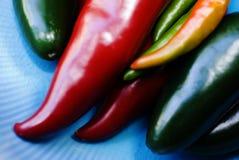 Variedad de pimientos picantes imagen de archivo libre de regalías