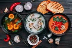 Variedad de sopas poner crema y de ingredientes de las verduras coloridas para s imagenes de archivo