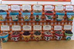 Variedad de té Foto de archivo libre de regalías