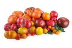 Variedad de tomates maduros aislados Fotos de archivo