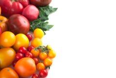Variedad de tomates maduros aislados Foto de archivo
