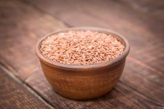 Variedad del arroz del grano de Brown Fotografía de archivo