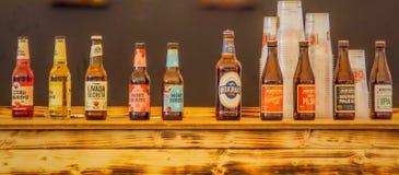 variedad del mundo de cervezas del tequila foto de archivo
