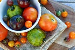 Variedad del tomate de la herencia foto de archivo libre de regalías