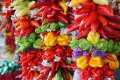 Variedade colorida, pendurando da pimenta Imagem de Stock Royalty Free