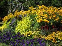 Variedade consideravelmente colorida de flores do verão em Stanley Park Perennial Garden, Vancôver, Canadá, 2018 imagem de stock royalty free