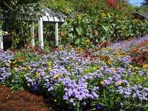 Variedade consideravelmente colorida de flores do verão em Stanley Park Perennial Garden, Vancôver, Canadá, 2018 fotos de stock royalty free