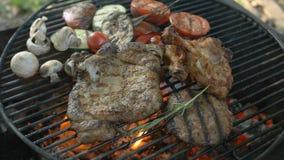 Variedade da carne com um close-up, uns tipos diferentes da carne e uns vegetais na grade, pé de galinha, bife e grelhado vídeos de arquivo