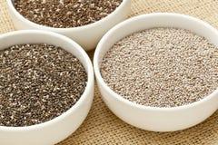 Variedade da semente de Chia Fotografia de Stock