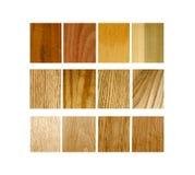 Variedade das amostras de madeira Foto de Stock