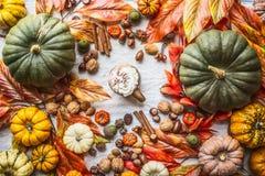Variedade de abóboras coloridas da exploração agrícola com a caneca de chocolate quente, de porcas, de especiarias e de folhas de imagem de stock royalty free