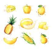 Variedade de alimentos, do fruto da aquarela e de vegtables amarelos ilustração stock