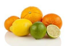 Variedade de citrinos Imagem de Stock Royalty Free