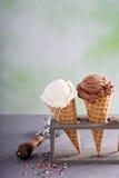 Variedade de cones de gelado Fotografia de Stock Royalty Free