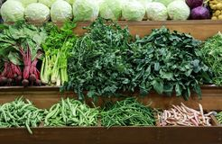 A variedade de couve dos legumes frescos, verde deixa o horta, espinafre, aipo, feijões verdes, beterrabas no contador no grego Imagens de Stock Royalty Free
