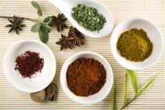 Variedade de especiarias e de ervas Foto de Stock Royalty Free