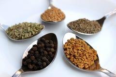 Variedade de especiarias secas, fim acima Fotos de Stock