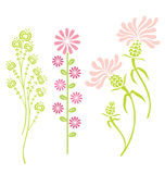 Variedade de flores Fotos de Stock