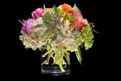 Variedade de flores isoladas no preto Imagem de Stock
