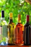Variedade de frascos de vinho. fotos de stock