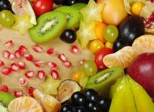 Variedade de frutas exóticas Fotografia de Stock Royalty Free