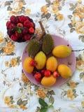 Variedade de fruto fotos de stock