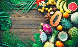 Variedade de frutos tropicais com as folhas das palmeiras e do exot fotografia de stock