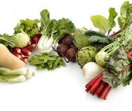 Arranjo dos legumes frescos imagens de stock royalty free