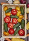 Variedade de legumes frescos em uma caixa de madeira Fotografia de Stock