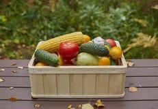 Variedade de legumes frescos em uma caixa de madeira Imagem de Stock