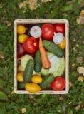 Variedade de legumes frescos em uma caixa de madeira Foto de Stock Royalty Free