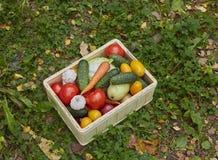 Variedade de legumes frescos em uma caixa de madeira Foto de Stock