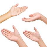Variedade de mãos em poses diferentes Imagem de Stock Royalty Free