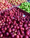 Variedade de maçãs frescas em um mercado da exploração agrícola imagens de stock royalty free
