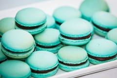 Variedade de Macarons Fotos de Stock Royalty Free