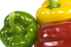 Variedade de pimentas coloridas de deferimento Fotos de Stock Royalty Free