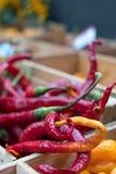 Variedade de pimentas doces coloridas na venda no mercado do alimento da acima-escala de Eataly em Turin, Itália fotografia de stock royalty free