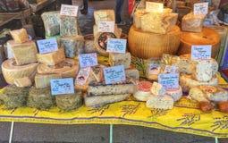 Variedade de queijo fotografia de stock