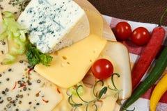 Variedade de queijos em uma placa de corte Imagem de Stock
