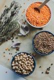 Variedade de sementes do feijão em uma bacia No fundo rústico Fotos de Stock Royalty Free